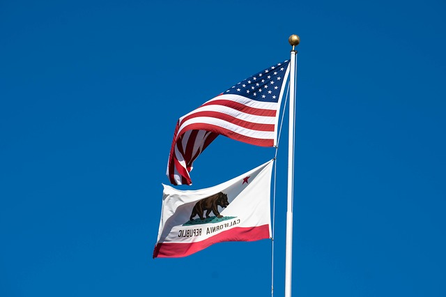 California Self Employment Tax: State & Federal Compliance